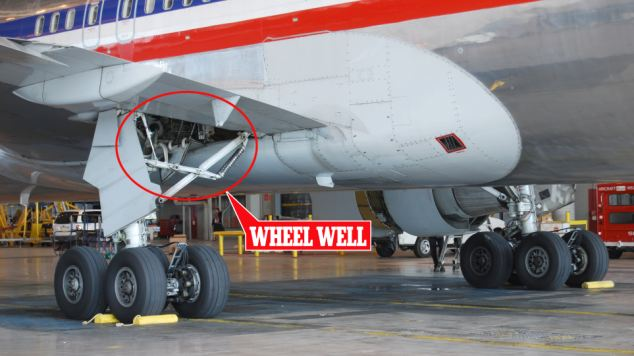 How Did A Boy Who Hid In A Plane S Wheel Well Survive A 5