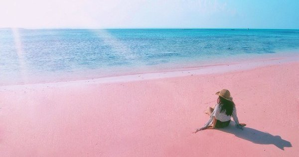 Image result for lombok pink beach