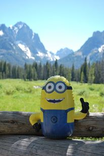 A minion spotted in Boise, ID, US.