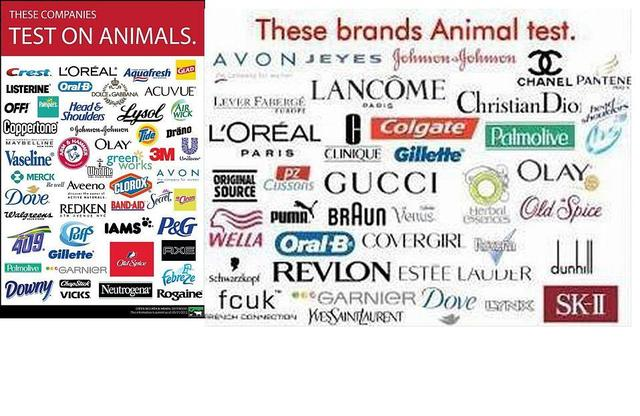 Cosmetic brands that dont test on animals uk