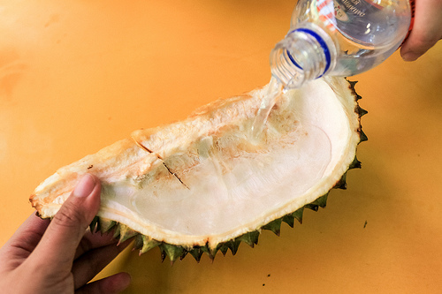 Myth: You can get rid of the smell by drinking water from the shell.
