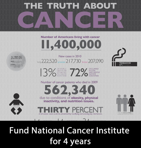 The enacted financial year 2014 budget for NCI is $4.923 billion. So Facebook could have funded cancer for next 4 years.