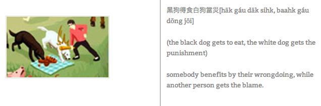 A lucky black dog and a unlucky white dog