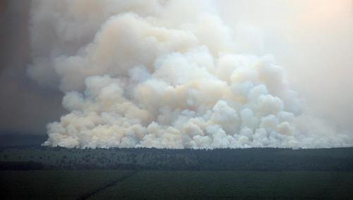 In this handout aerial photograph taken on February 28, 2014 and released by the Indonesia Disaster Task Force on March 2, 2014, smoke rises from burning areas of cleared forest land in Riau province in Indonesia's Sumatra island. Riau province, the heart of a South-east Asian smog crisis last year, has declared a state of emergency after being blanketed in thick haze from forest fires.