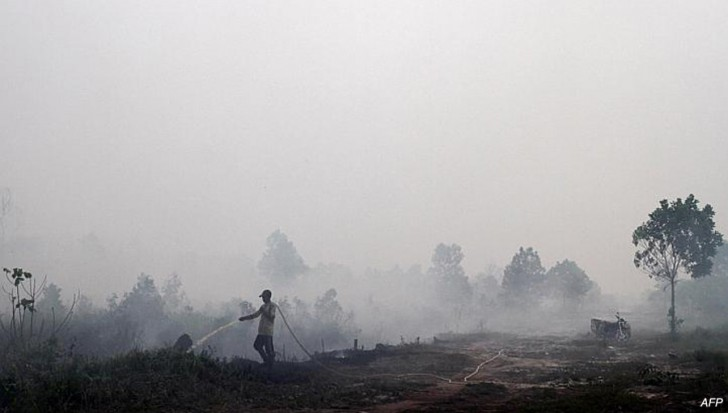 A resident sprays water on a peatland fire in Pekanbaru district in Riau province on Indonesia's Sumatra island on Feb. 16.