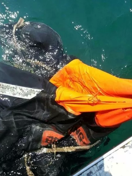 The life raft found by a group of fishermen 10 nautical miles from Port Dickson yesterday  Read more: MISSING MH370: Hopes as fishermen find life raft near PD - Latest