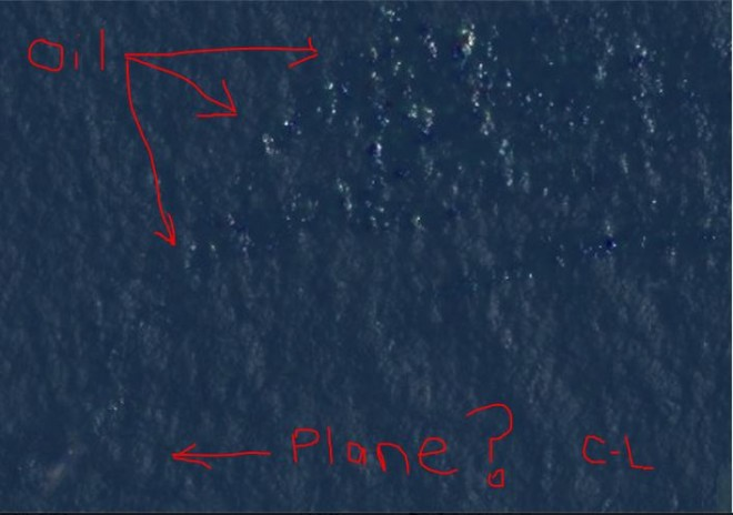 Courtney Love pointed out at the possible debris of the missing Malaysian Airlines flight MH370 in the picture.