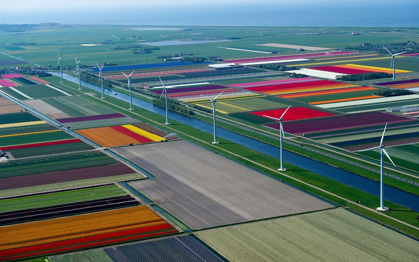 Acres of colour sprawl across the landscape, highlighting the patchwork rainbow of Holland's tulip fields. Photographer Normann Szklop hired a small plane for the shoot over fields in Anna Paulowna, a municipality in North Holland