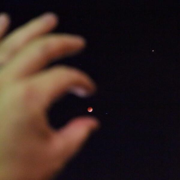 Almost caught it before the haze rolled in...#bloodmoon Image via
