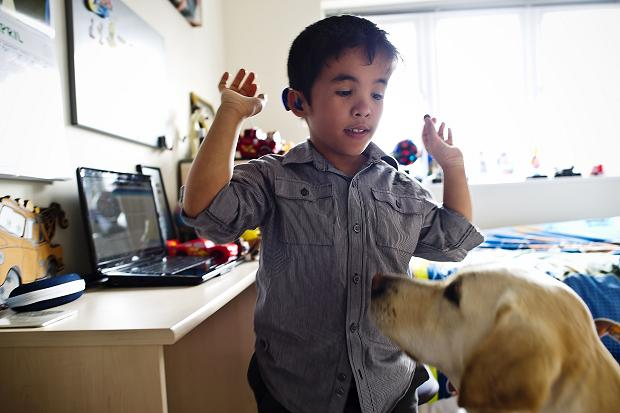 Hearing dogs are slightly different from guide dogs as they aid people with difficulty hearing.