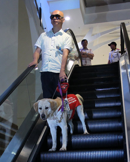 The man and his guide dog was chased out of the mall.