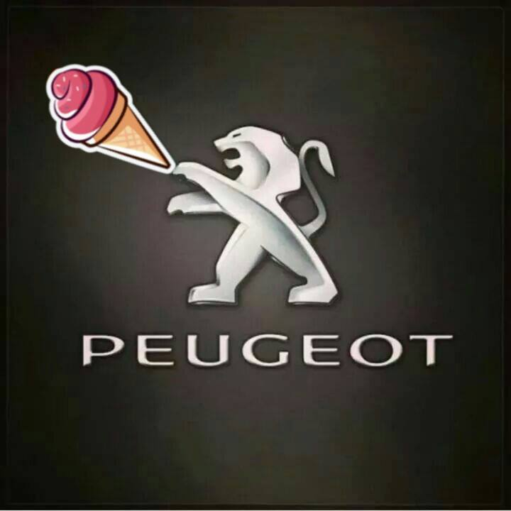 Image from Facebook Peugeot Club Malaysia