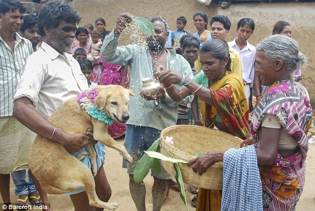 Marrying dogs is a common practice for young girls in that village before marrying a man as it is believed that by doing so, the marriage will be blessed with longetivity