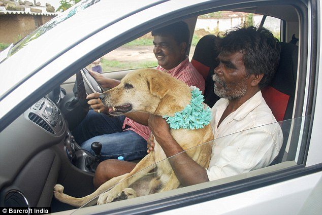The dog, named Shenu was seen chauffeured in the car and went through the traditional Hindu ceremony