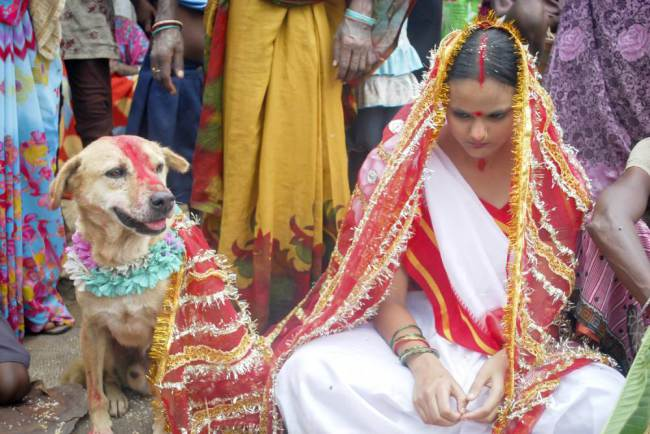 Although, Mangli was not happy to wed the dog, she believed that it will change her fortunes