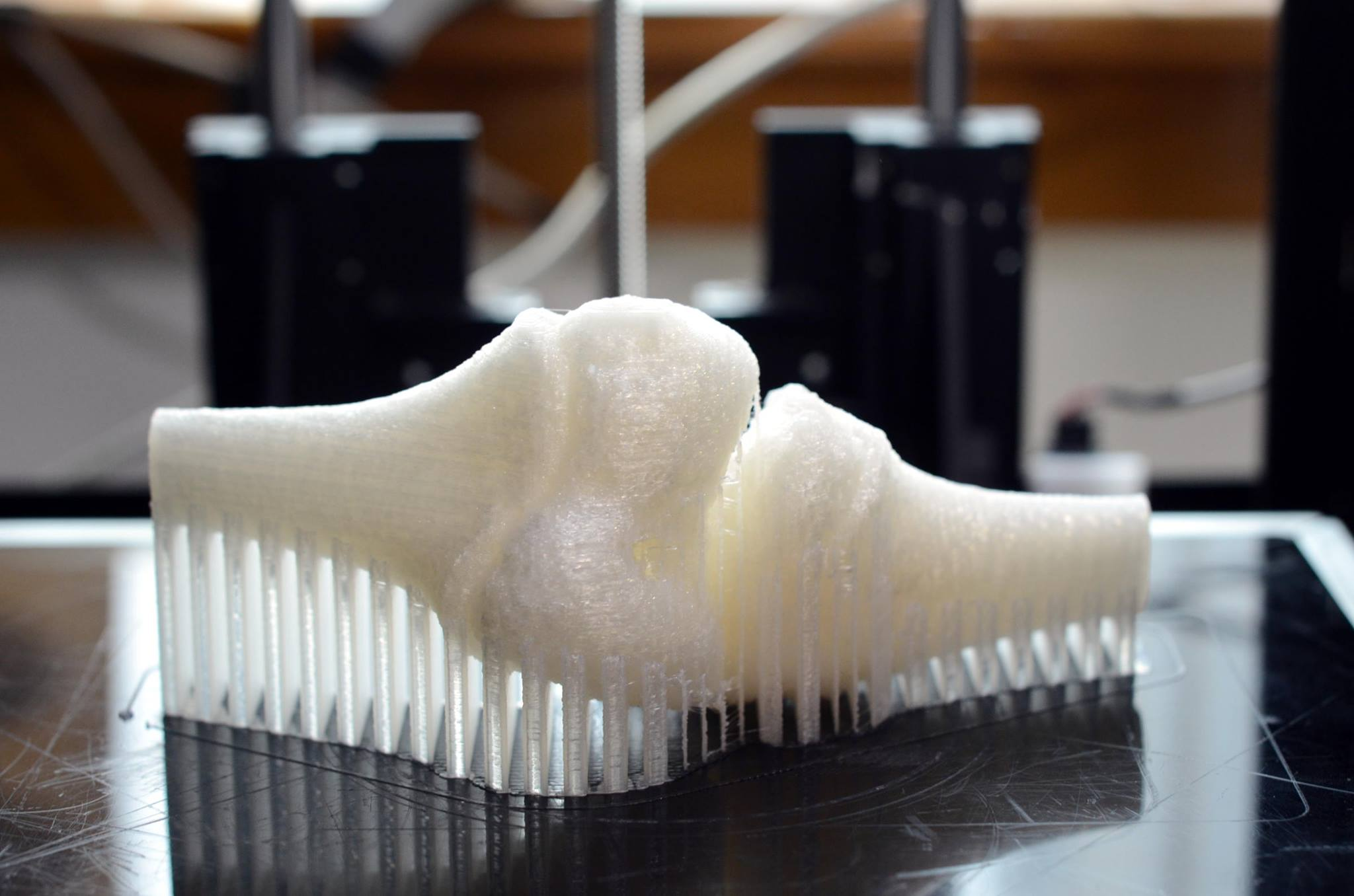 A 3D printed bone.