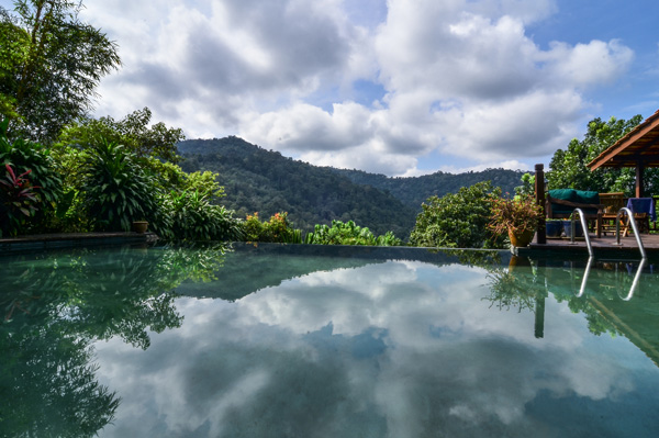 Image from thedusun.com.my