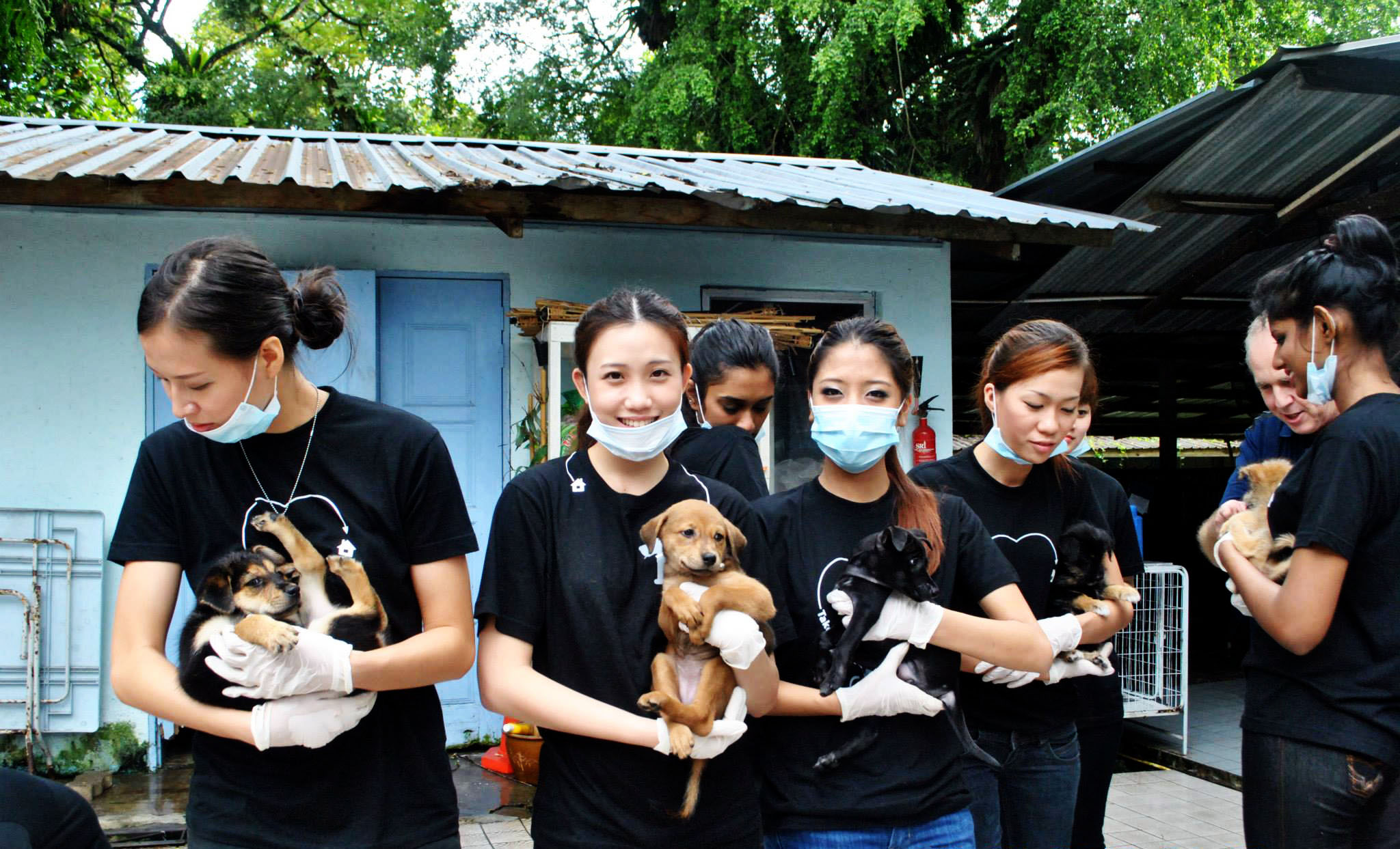 Youth volunteers at Pulau Ketam in 2009, when it became a dumping ground for hundreds of stray dogs.