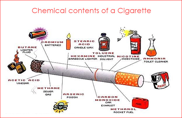 The Chemistry of Nicotine