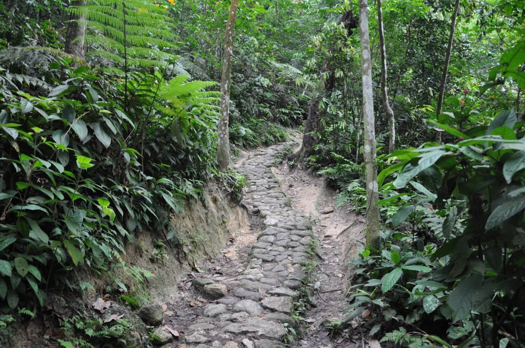 Image from Sungai Siput