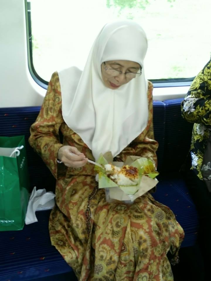 Image from Facebook Dr Wan Azizah