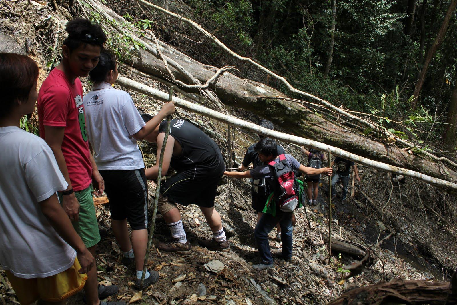 Image from Travel Around Borneo