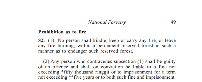 National Forestry Act 1984, Act 313, Section 82