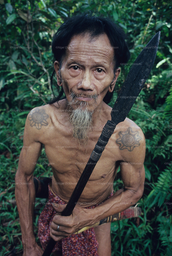 A Penan elderly man, holding a blowpipe. The Penans are hunters that rely on the forest for food source.