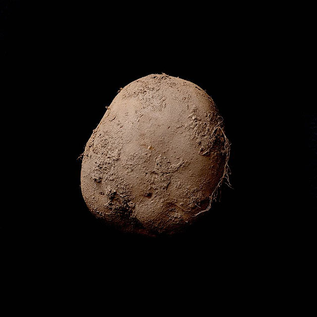 Potato #345 (2010) by Kevin Abosch.