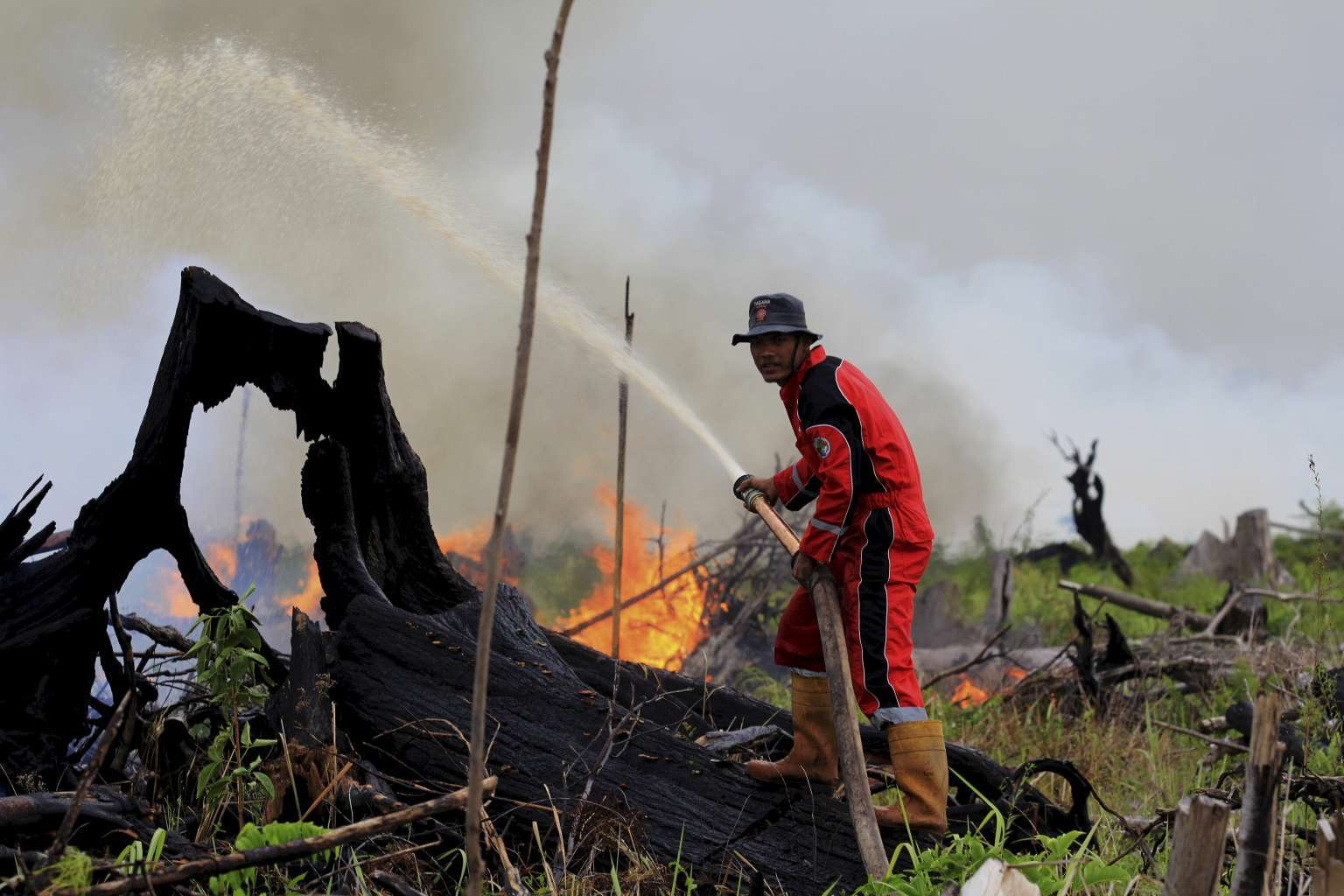 A fire fighter tries to put out a fire on land intended for a palm oil plantation in the village of Tanjung Palas, Dumai, Riau province, Sumatra, Indonesia on 5 March.