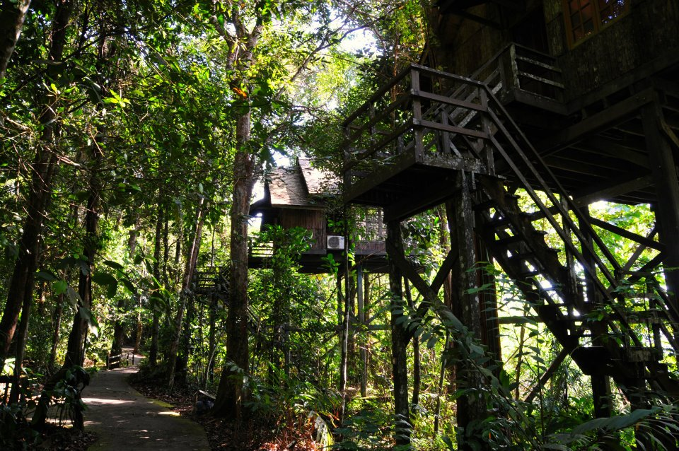 Image from Permai Rainforest Resort/Facebook