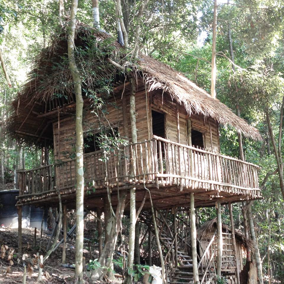 Image from Rainforest Tree House/Facebook