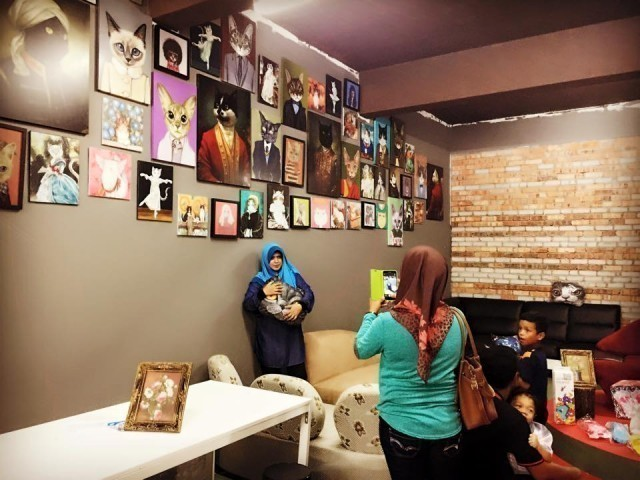 Image from Malaysia CAT CAFE/Facebook