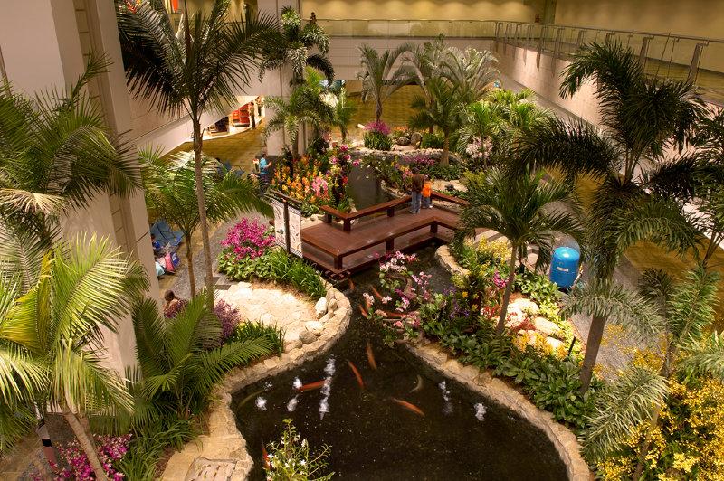 Orchird Garden.