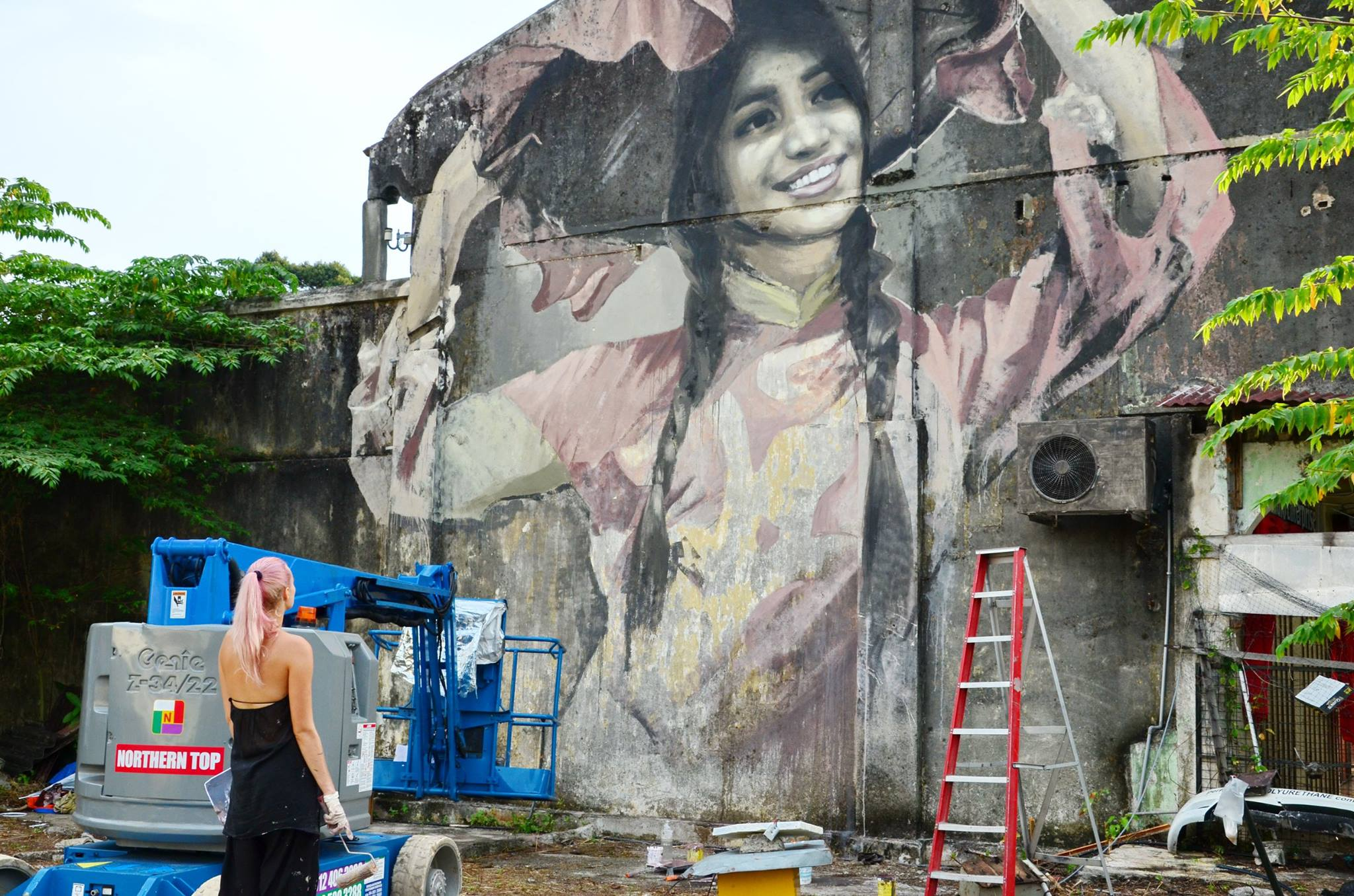 Image result for penang paint