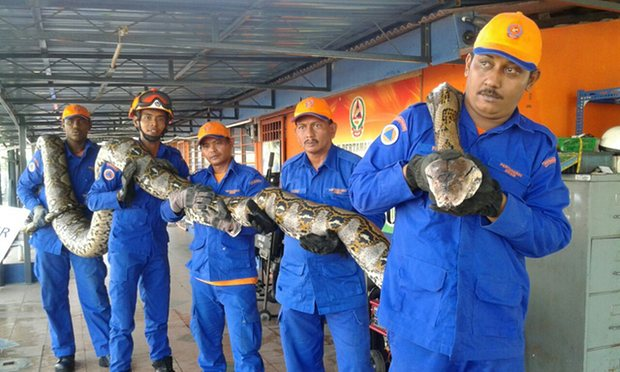 Image from Herme Herisyam/Malaysia Civil Defence Department