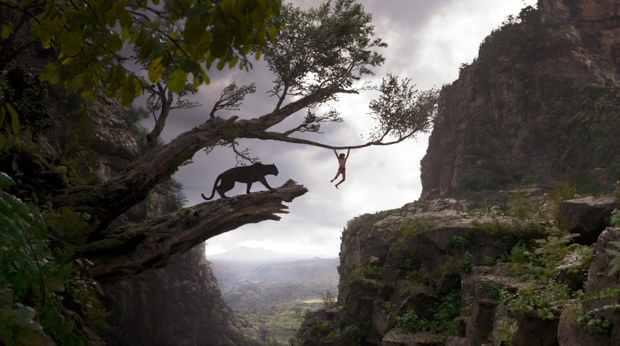 A scene from 'The Jungle Book'.