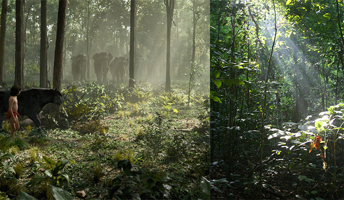 The environment of the scene where Mowgli and Bagheera come across a herd of elephants (left) is inspired by the lush greenery of Sabah's rainforests (right).