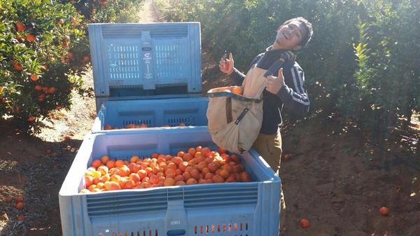 Image from tasikbiruselatan.blogspot.my