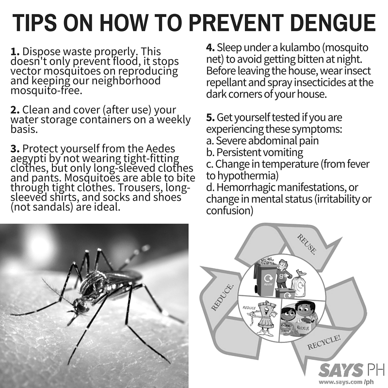 ways to prevent dengue The best natural ways to prevent dengue have been explained these home  remedies are simple but effective to protect yourself from dengue.