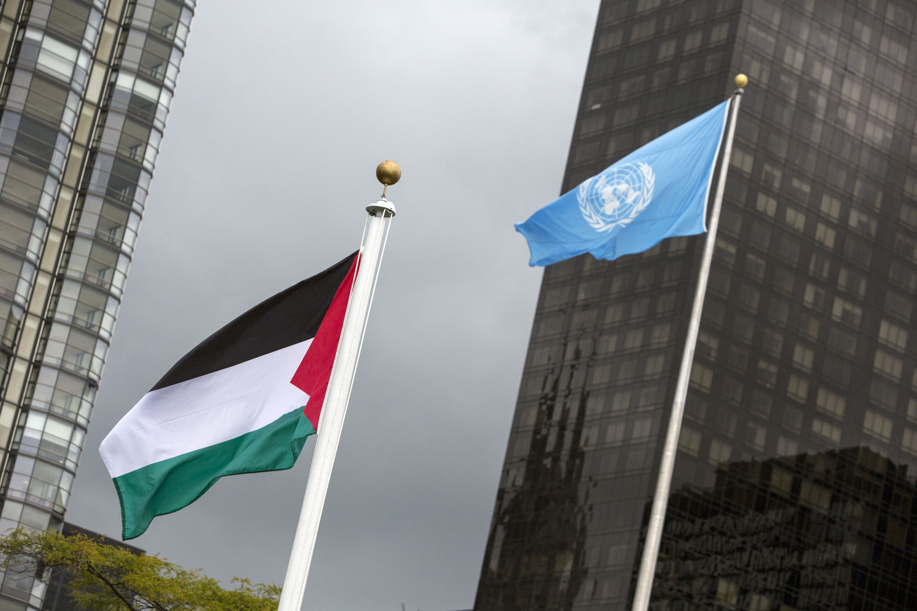 The Palestinian flag was raised at the UN headquarters for the first time last year.