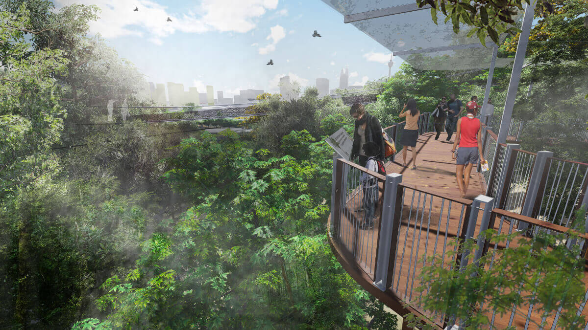 An artist impression of the Canopy Walk in the Rainforest Discovery Centre.
