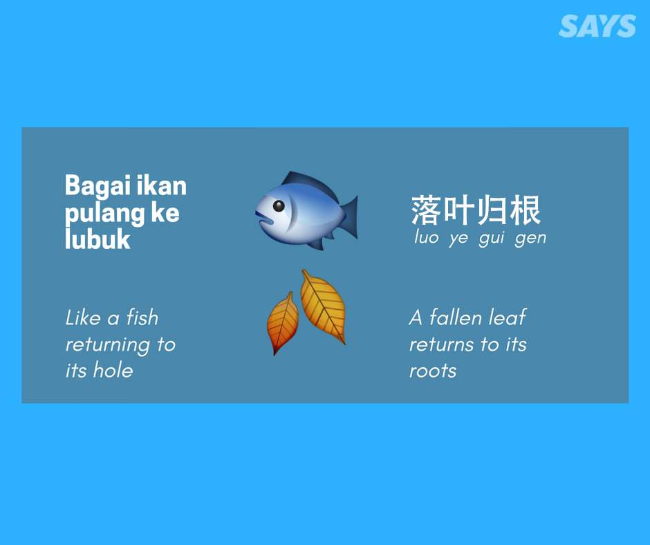 14 Malay Peribahasa And Chinese Idioms That Mean The Same Thing