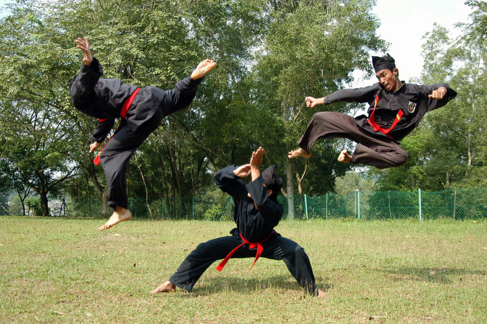 Image from Kung-Fu Kingdom