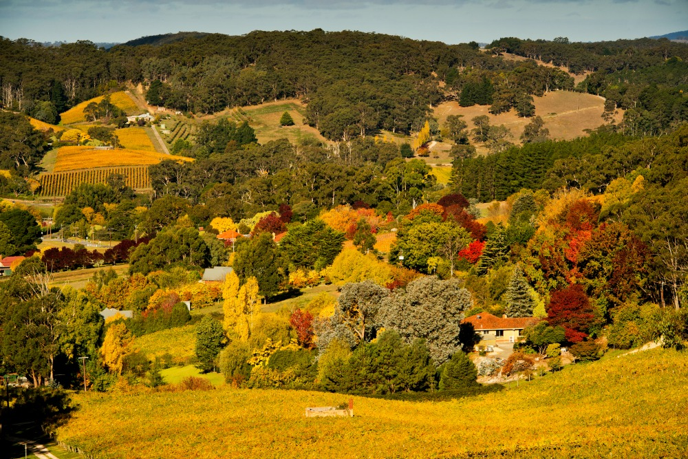 pin adelaide hills australia - photo #44