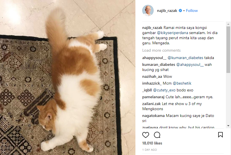 """""""A lot of people asked me to post a photo of Kiky yesterday. This is Kiky showing its tummy, asking for a belly rub. Extra."""""""