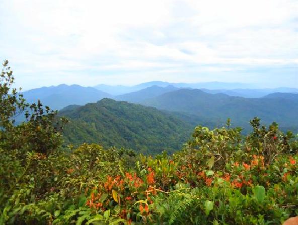 The view from the peak of Gunung Besar Hantu.