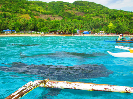 Image from Travelling the Philippines