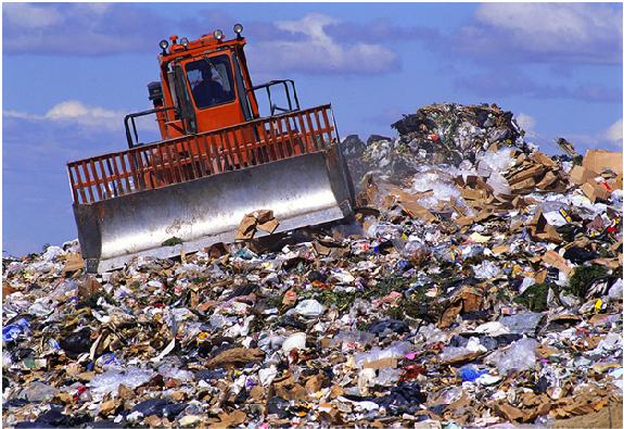Huge amounts of food go to waste in landfill and taxes, harming the environment.