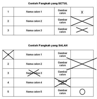 Here's how to mark the ballot paper properly.